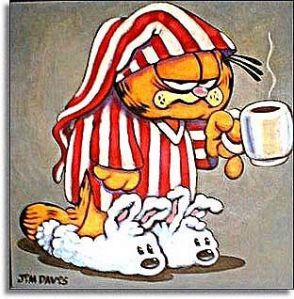 Garfield-Mornings-garfield-172375_312_318